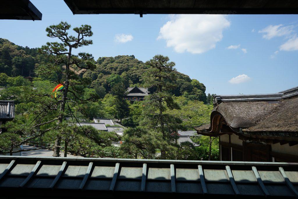 長谷寺本坊から見る本堂