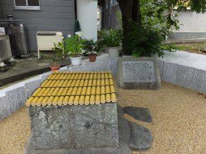 桜の井アップ