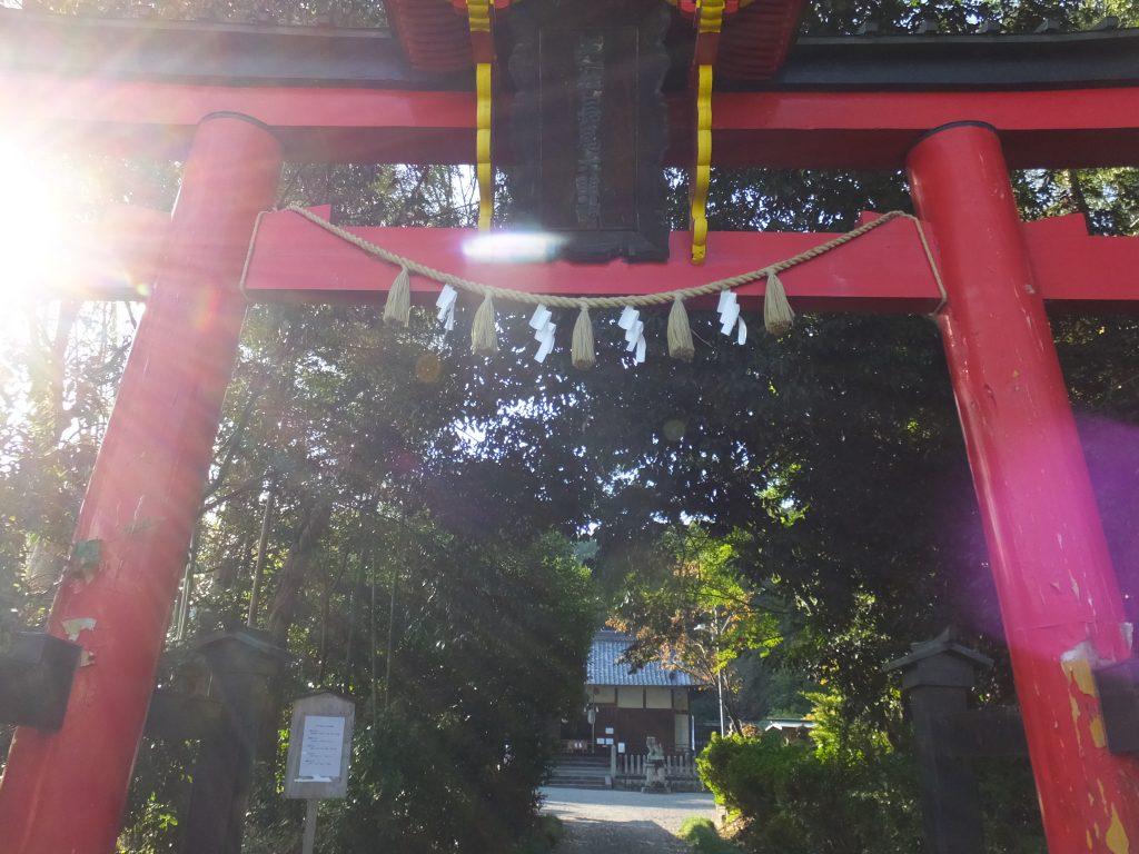 長尾神社鳥居アップ