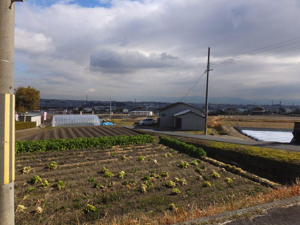 二上山へ向かう農道1