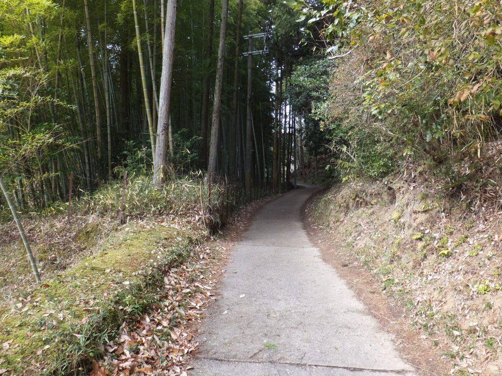 二上山登山口竹林道