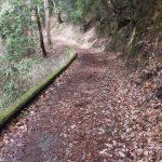 二上山登山道1