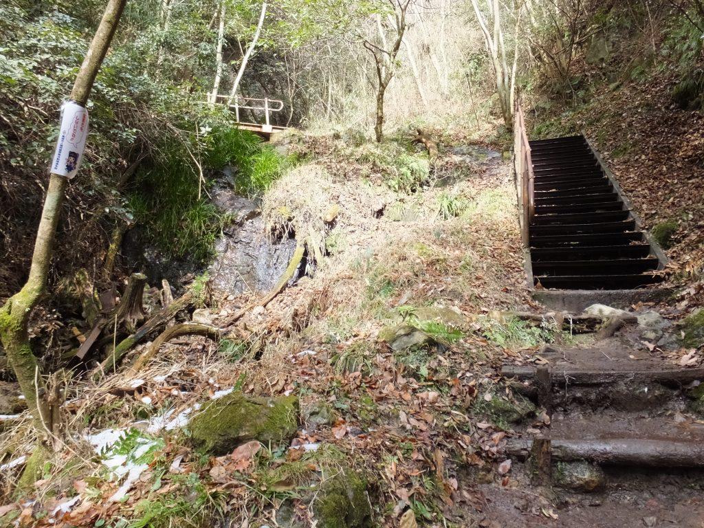 二上山登山道険しい道の階段