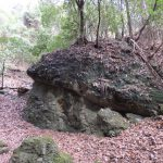 二上山登山道巨石