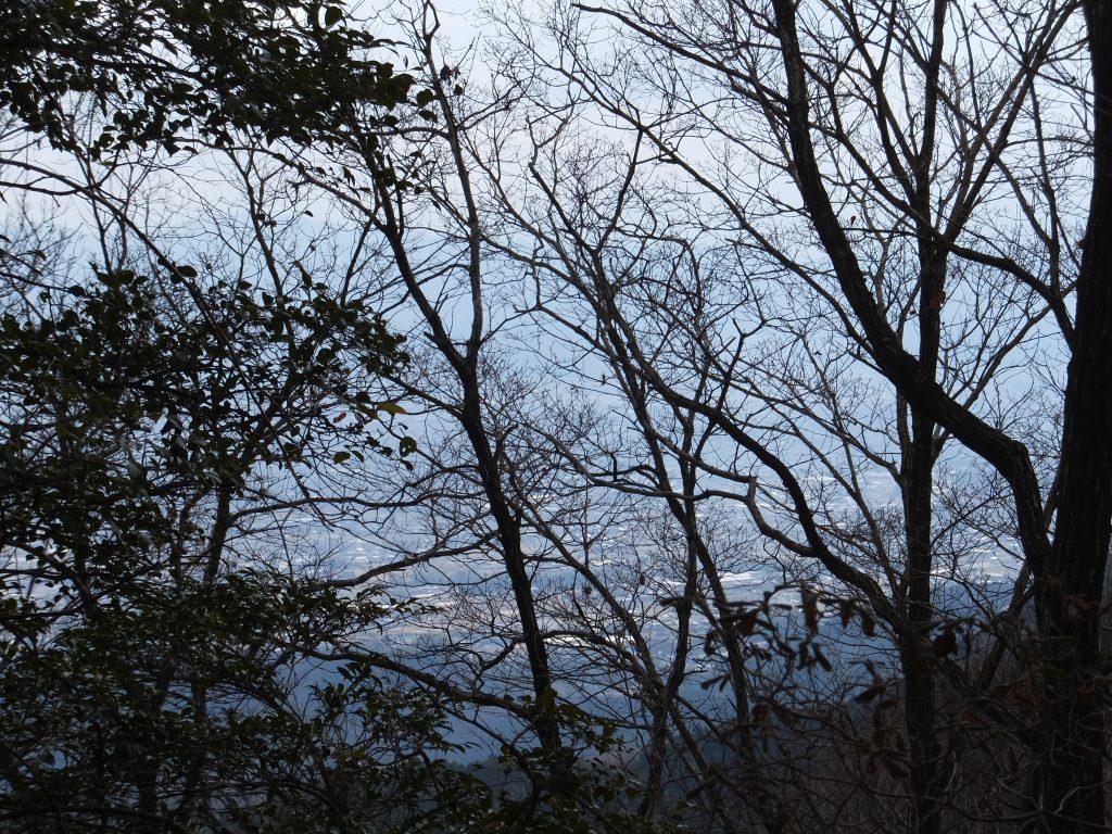 二上山馬の背からの奈良盆地