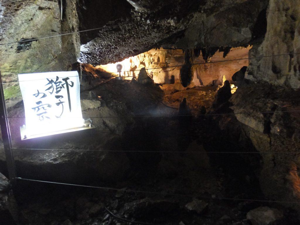 面不動鍾乳洞内部 - 獅子の窟