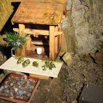 面不動鍾乳洞内部 - 化石