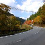 みたらい渓谷の紅葉1