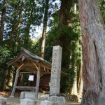 大杉と室生龍穴神社
