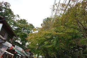 談山神社山門までの通り
