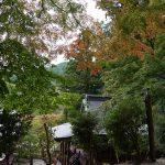 談山神社権殿の紅葉2