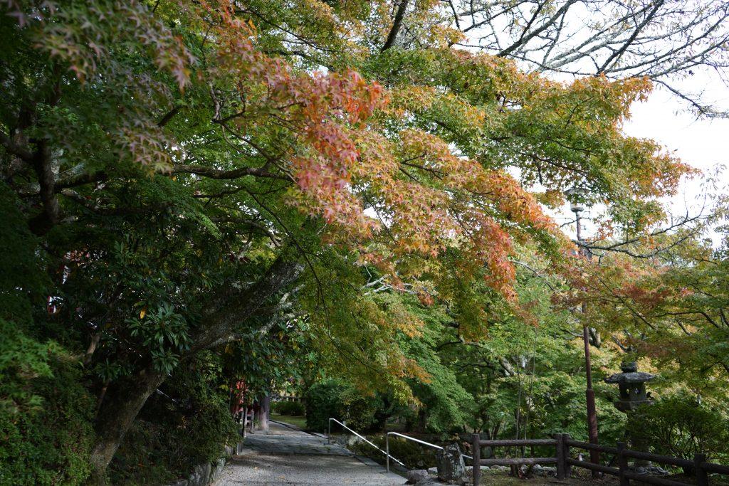 談山神社本殿8